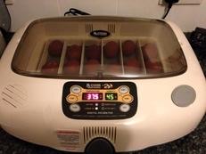 R-com 20 egg fully Auto incubator